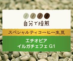 エチオピアイルガチェフェ G1スペシャルティコーヒー