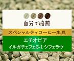 エチオピアイルガチェフェ G1シフェラウスペシャルティコーヒー